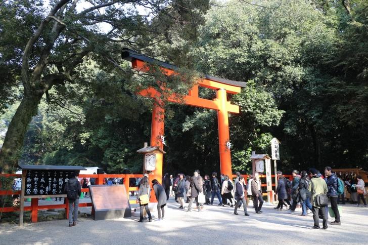 下鴨神社(京都市左京区)鳥居、この先から社殿までの行列ができていました