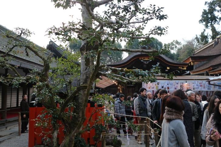 上賀茂神社(京都市北区)社殿、かなり狭いですが流れが速いです