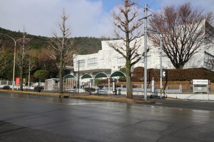 金閣寺エリアは学生と観光客がメインターゲットとなる場所です