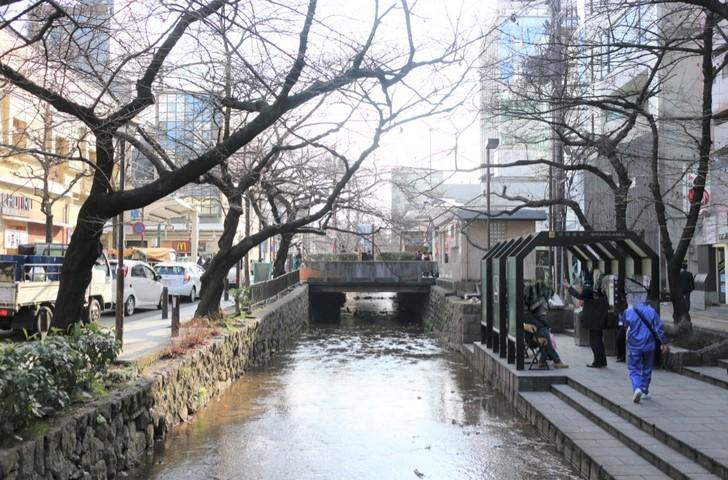 京都・木屋町の高瀬川