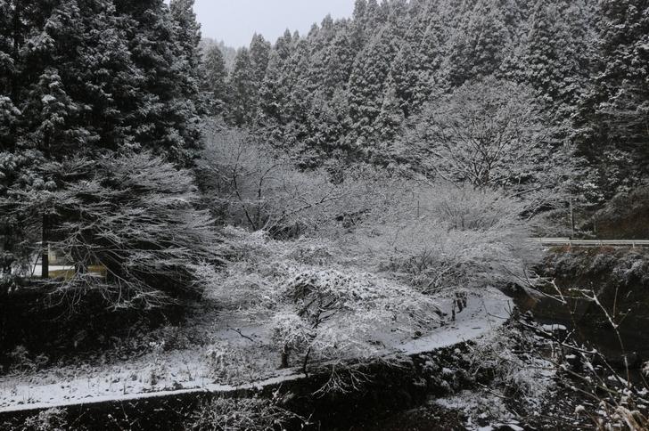 山はすっかり雪化粧で、街中から5キロほど入ると景色はだいぶ違いました