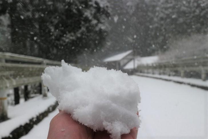 雪をすくっても溶けない寒さです
