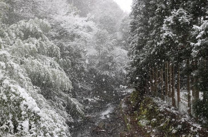 京都・持越峠の手前です、吹雪はさらにここから強まっています