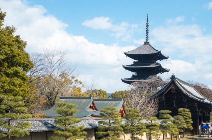 京都で「光コラボ」は「OCN」か「エキサイト」が低価格です