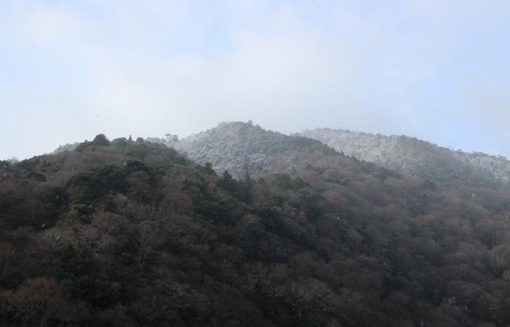 冠雪は標高400メートル以上の山頂付近だけでした