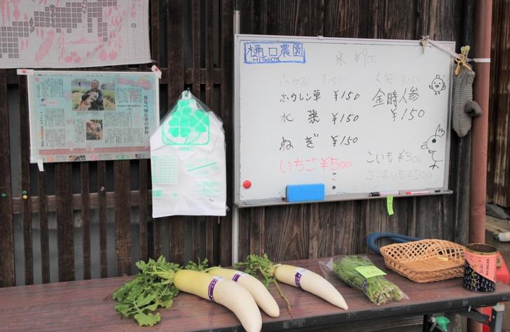 季節のお野菜が売られていますが中でも買えます