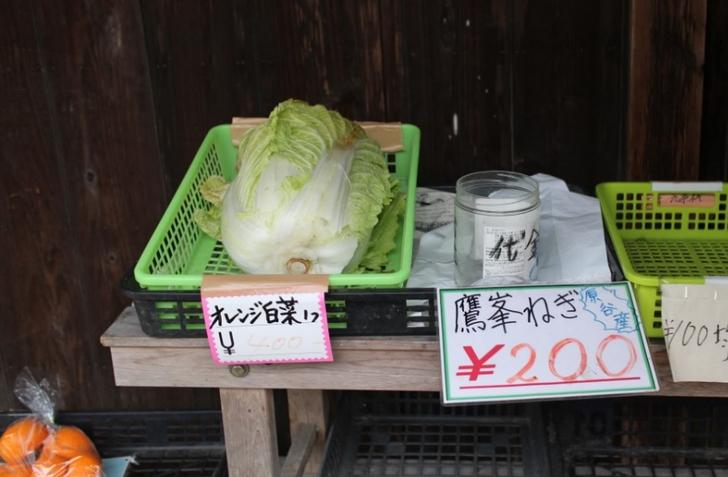 オレンジ白菜・鷹峯ねぎ など珍しい野菜があります