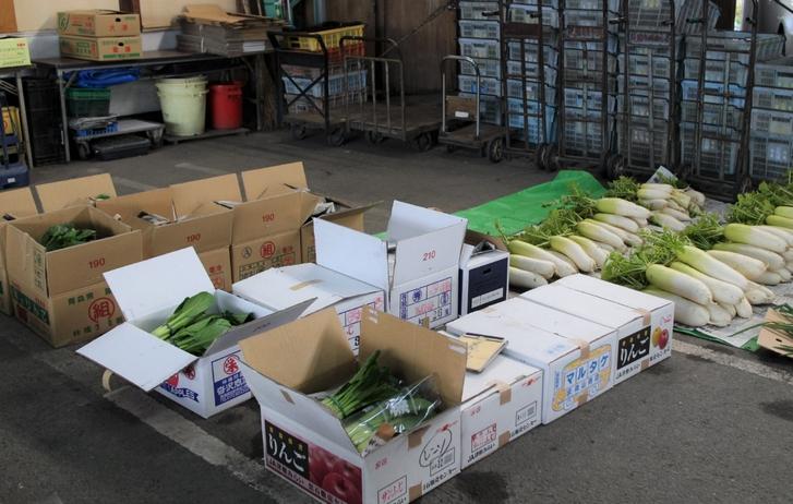 今の時期は「大根・九条ねぎ・小松菜」などが並んでいました