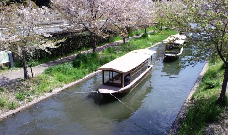 3月1日放送の『今ちゃんの実は』で京都・伏見のおでん屋さんが紹介されます