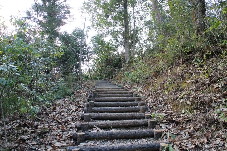 公園入口からは10分程度の登山があります