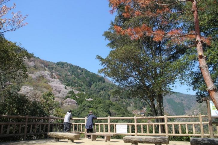 実は桂川の渓谷が一望できる小倉山への入口でもあるのです