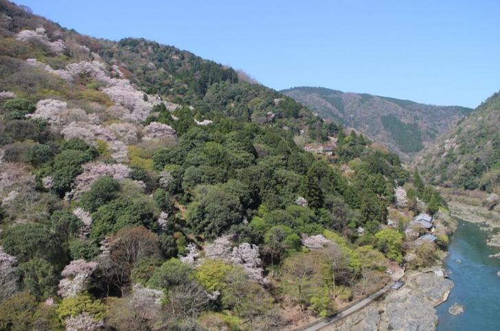 小倉山展望所で見られる絶景