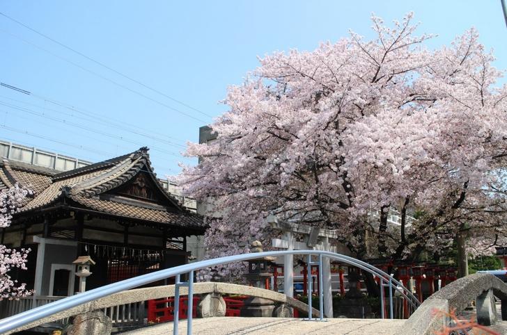 東海道新幹線がすぐ隣りを通過します