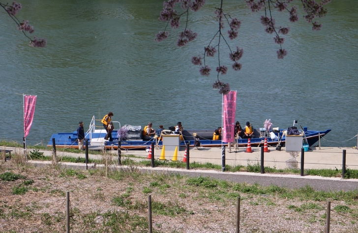 宇治川沿いの観光船