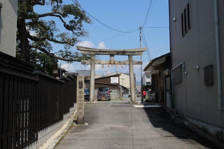 縁切りができる神社界最強の「櫟谷七野神社(いちいだにななのじんじゃ)」