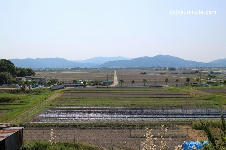 京都府亀岡市河原林町の田園風景
