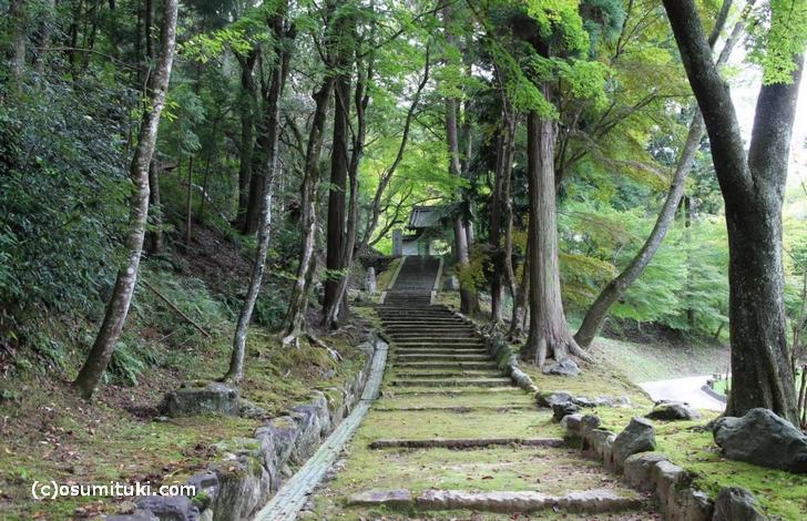 今回は京都府亀岡市の「桜天満宮」で「桜石」を探しにいきました