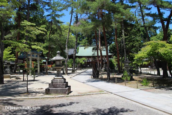 京都・今宮神社で「夏越の大祓」