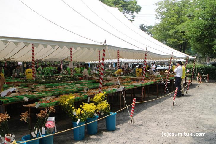 平成29年度「夏季農産物品評会」会場