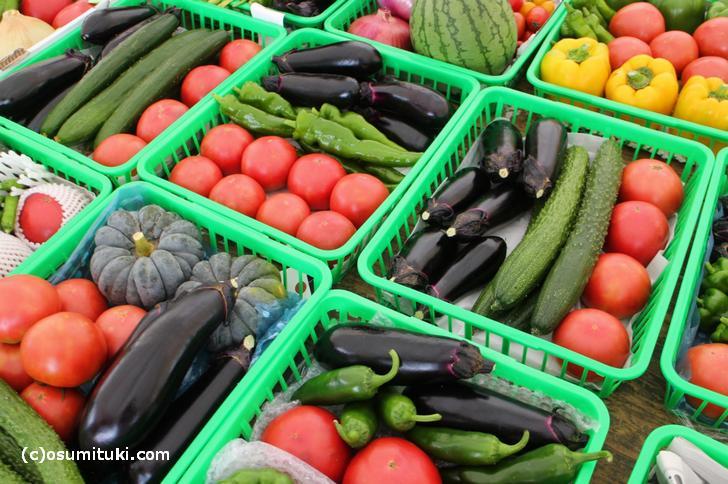夏野菜は食べるものではなく撮影するものです