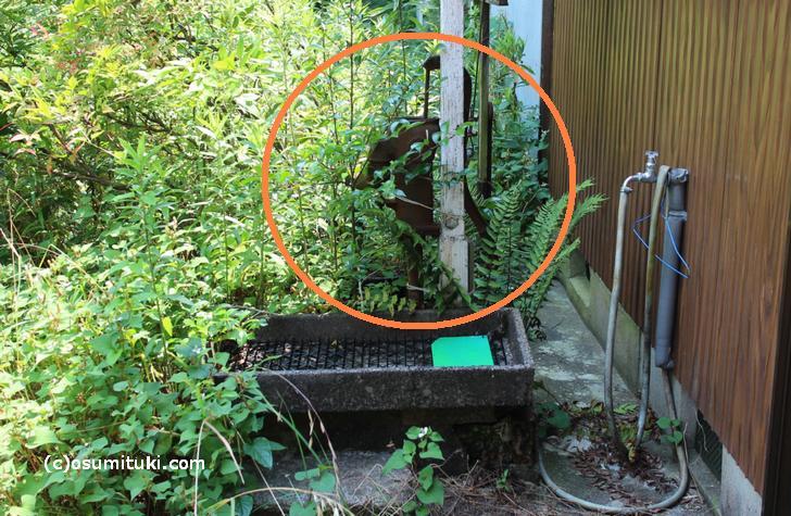 現在の「梅雨ノ井」は昭和初期くらいの状態のままですが管理されていないようです