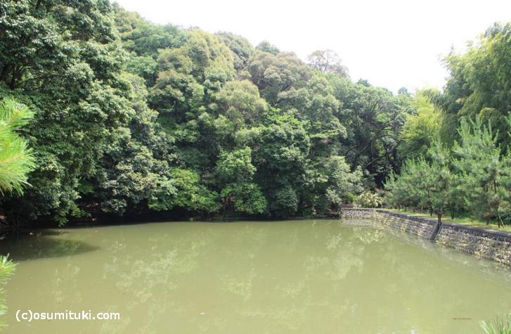 蓮華峯寺陵の池