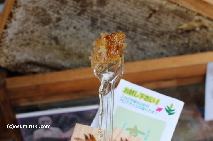 ハチの巣(蜜蝋)ごとハチミツを食べます
