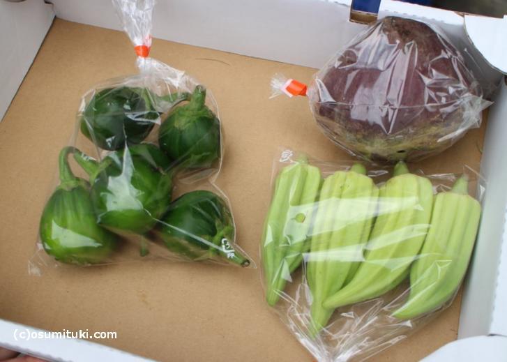 京都のプロショップ「八百屋よしむら」さんが恵んでくれたお野菜