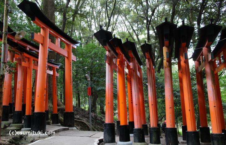 伏見稲荷大社「千本鳥居」を横から見るとこんな感じ