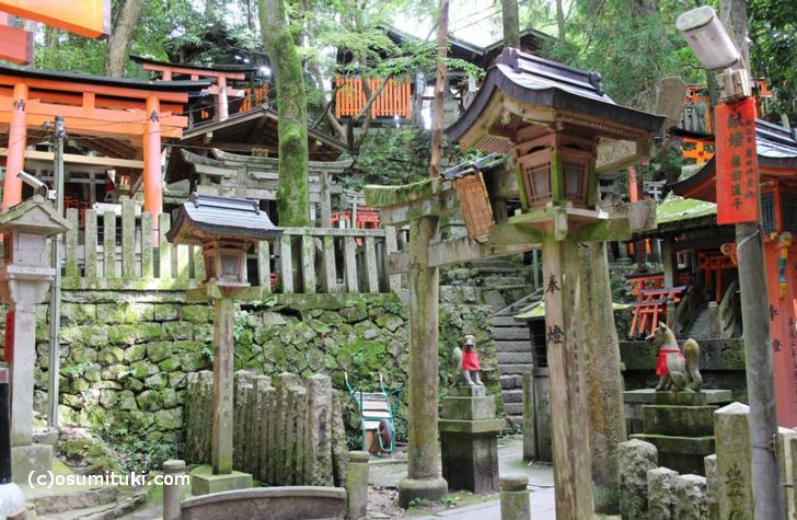 伏見稲荷大社(稲荷山)の風景