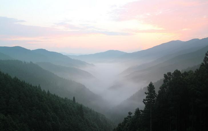 高野山スカイラインの雲海(2016年8月18日朝撮影)
