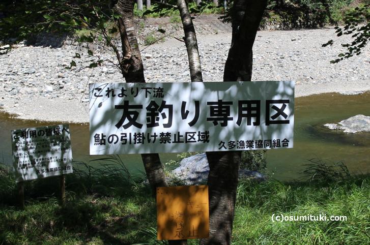 久多の里オートキャンプ場付近は「針畑川」で友釣り専用区(引っ掛け釣り禁止)