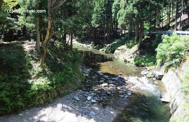 撮影は大黒谷キャンプ場付近の「久多川」かもしれません