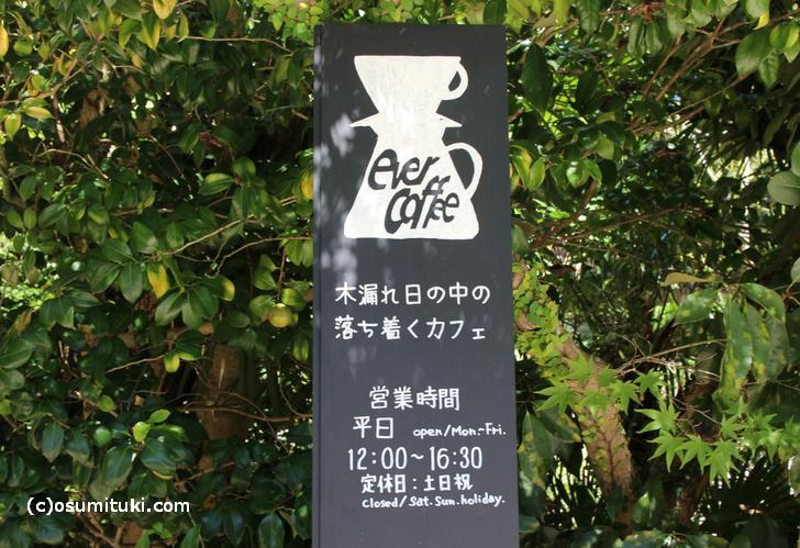 木漏れ日の中の落ち着くカフェ