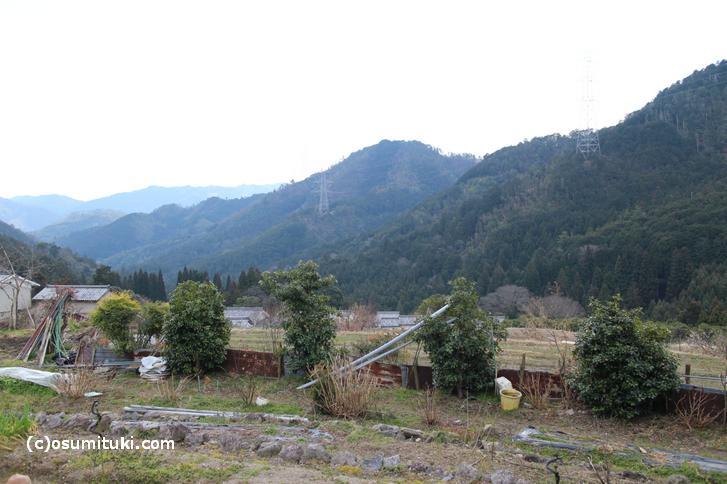 柚子は寒暖差のある標高の高い山の斜面で栽培されます(写真は京都・水尾の柚子畑)