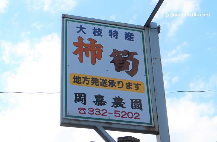 京都で柿といえば「大枝柿」です