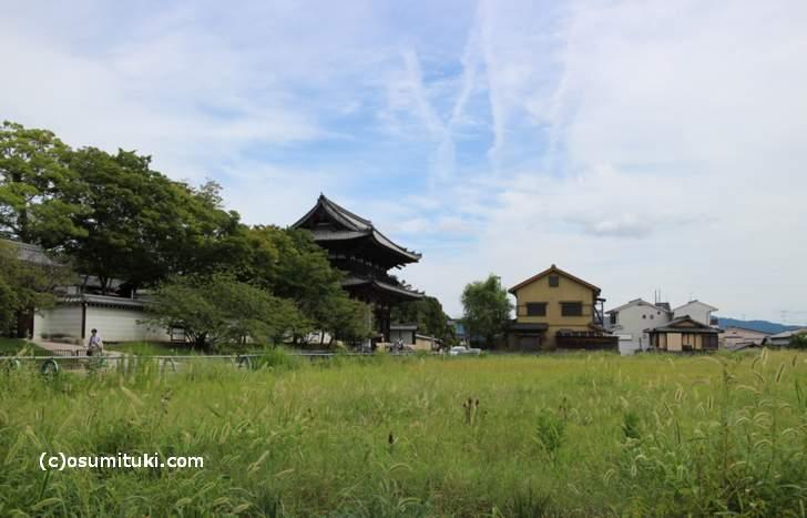 京都の西北「一条通」から仁和寺を望む