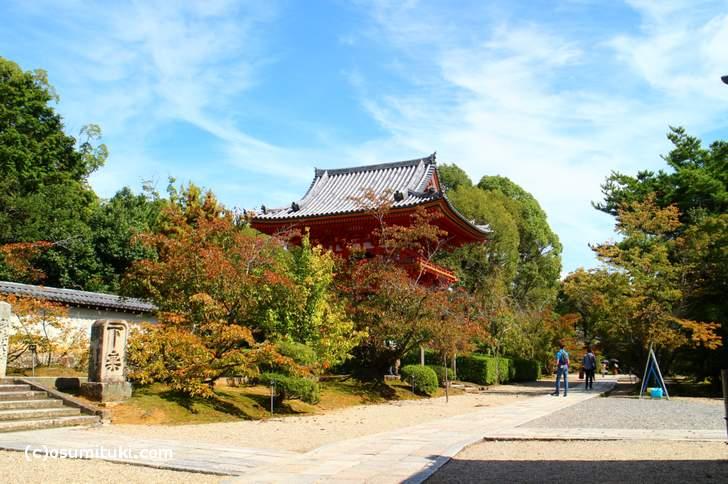 2017年10月8日、京都・仁和寺は少し紅葉づいています
