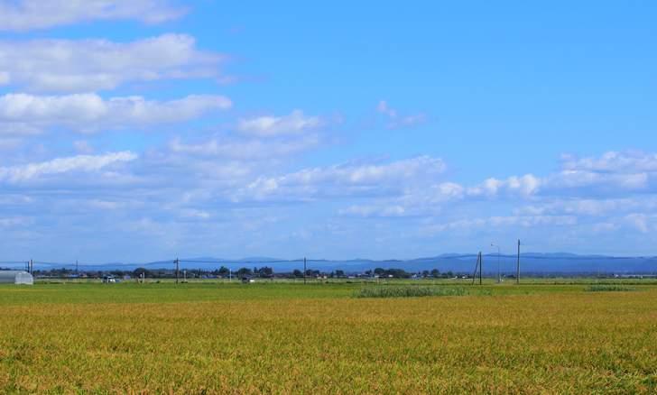 秋田県の田園風景