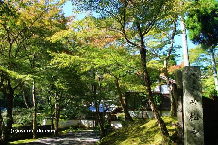 吟松寺は鷹峯・紅葉の穴場です