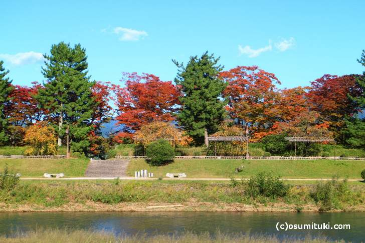 2017年10月31日の京都「鴨川で見た紅葉」