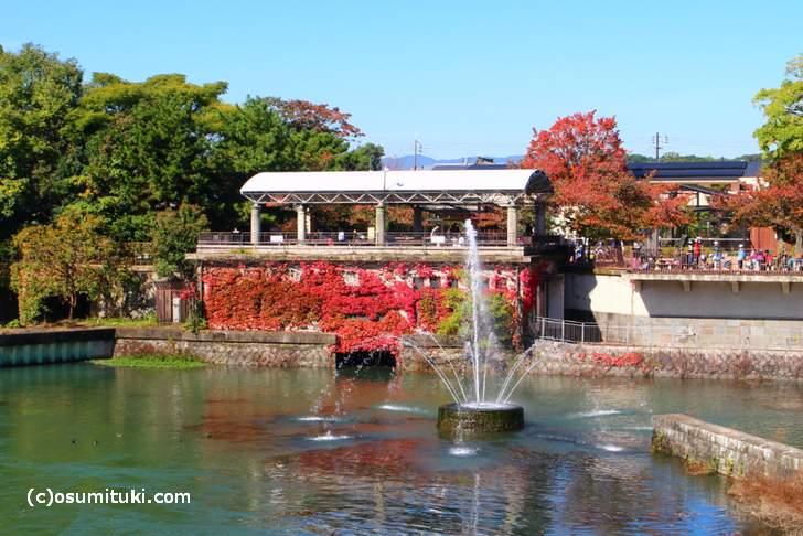 岡崎疎水の噴水(2017年11月1日撮影)