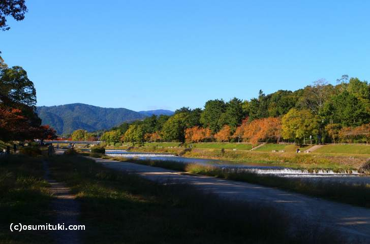 御園橋方面まで紅葉が続いています