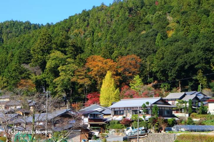 京都府道40号線から非常に目立ちます