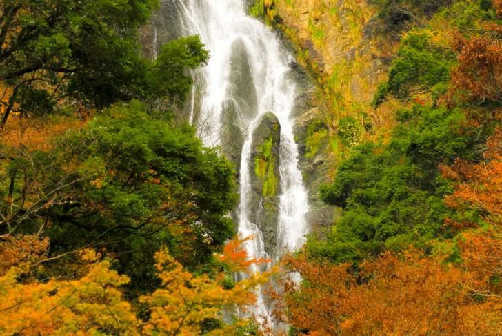 神庭の滝(岡山県真庭市)の滝の飛沫から命名されました