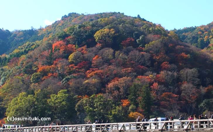 京都・嵐山の紅葉 2017年11月24日