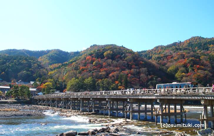 京都の紅葉ピークはすでに過ぎており終盤です