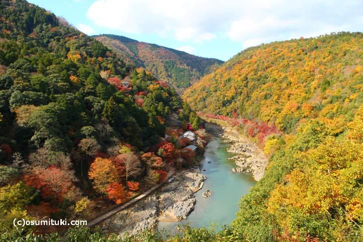 紅葉の穴場「嵐山公園 亀山地区 展望台」から見た紅葉