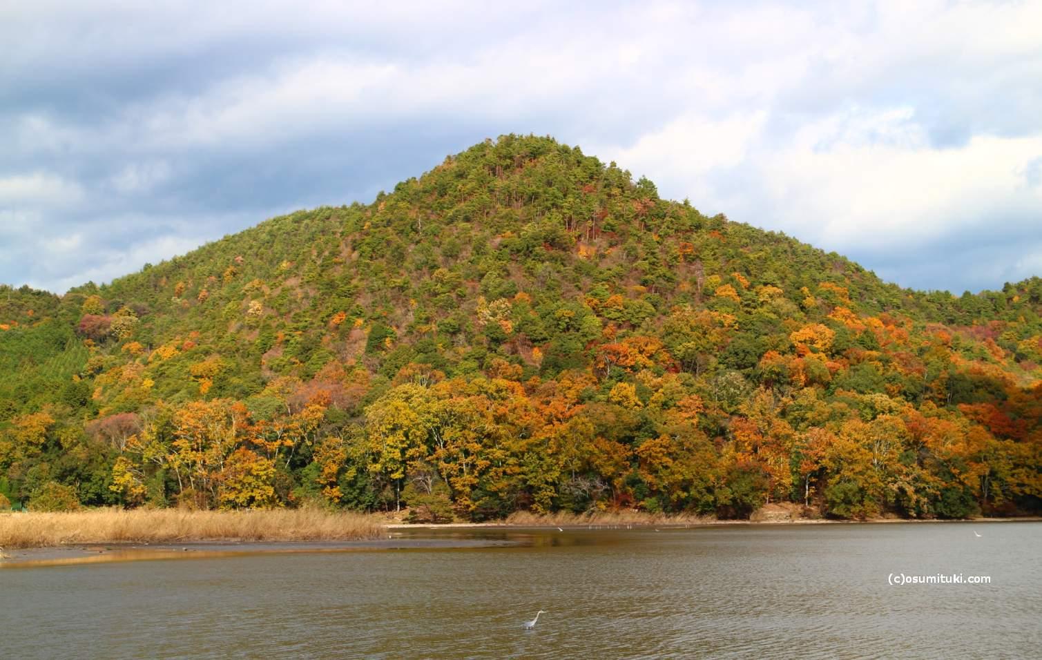 北嵯峨の山越にある広大な庭園から紅葉を見ることができます