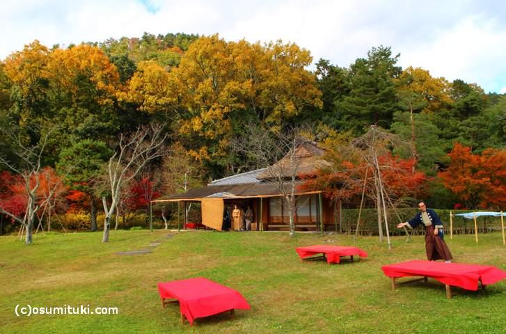 野点会場では無料で抹茶と和菓子がふるまわれています
